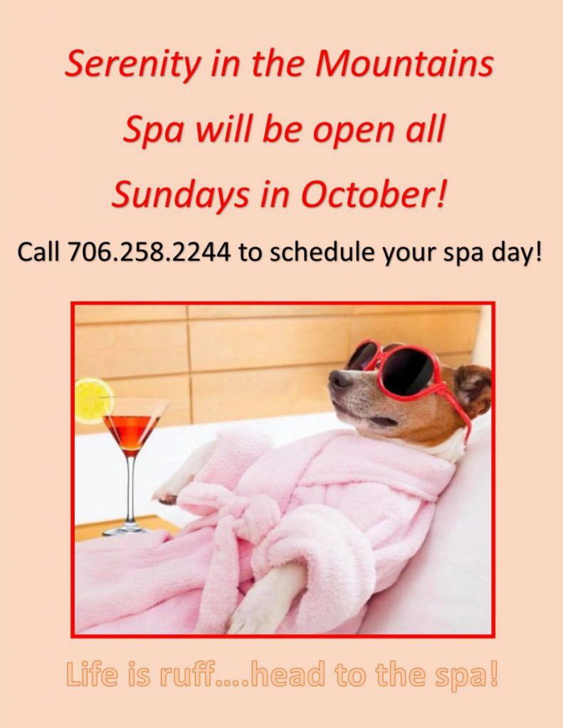 Spa Appointments Available on Sundays during October!